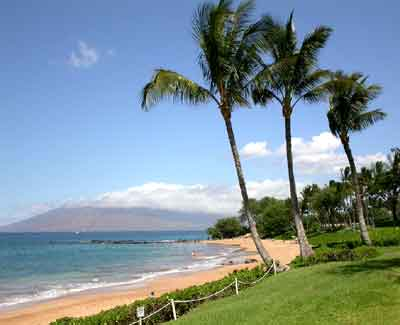 Maui400x325.jpg