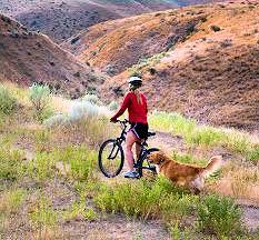 foothills biking