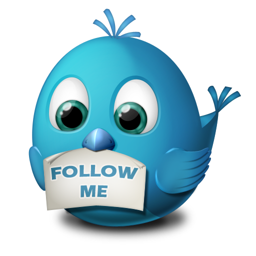 twitter-follow-me-icon.png