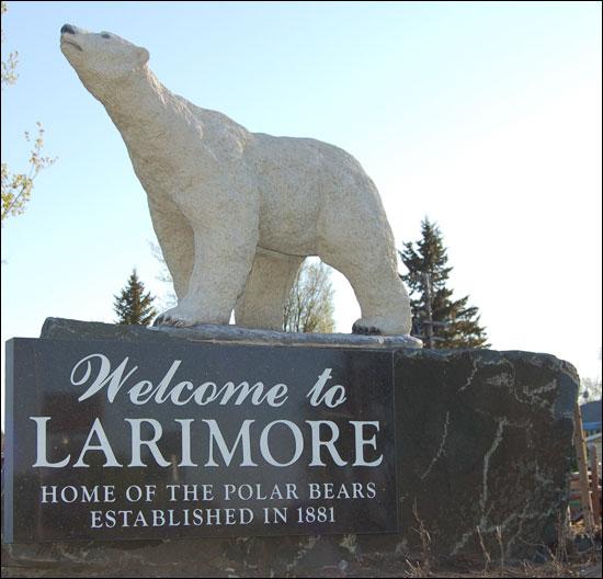 polar_bears_larimore.jpg