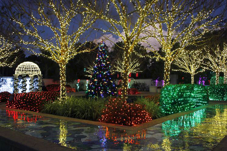 Holiday fun can be found all over pinellas county - Florida botanical gardens christmas lights ...