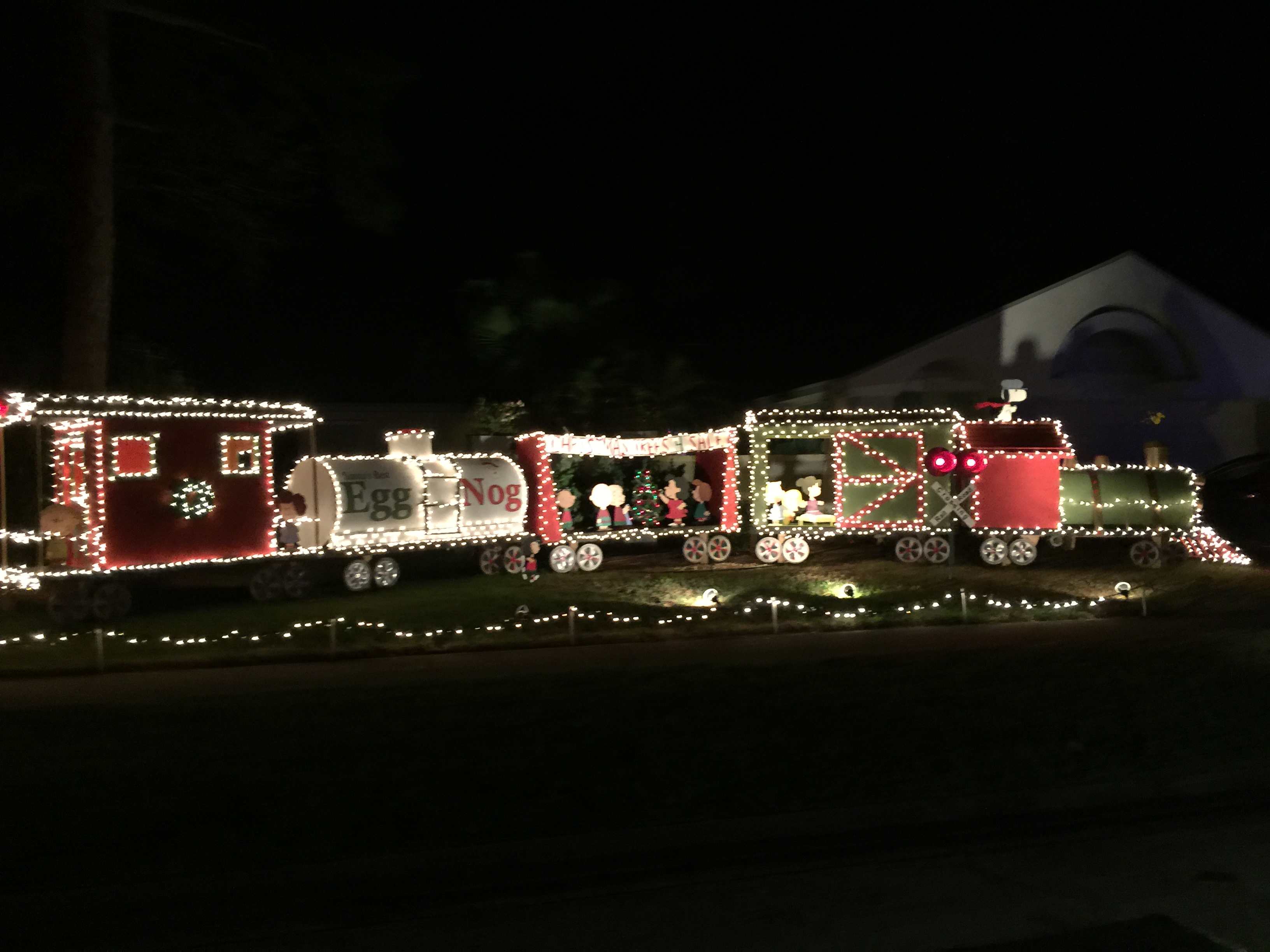 2015 Holiday Lights...Pinellas County is Shining Bright!