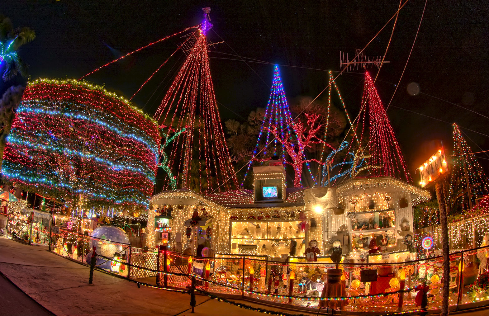 Holiday fun can be found all over pinellas county - Largo botanical gardens christmas lights ...