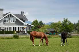 Horse_Property_2.jpg