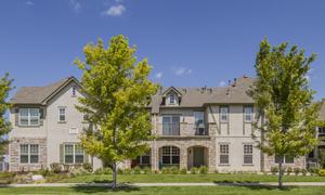 Trimark Mansion Homes at Stapleton